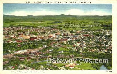 Birds-Eye View From Mill Mountain - Roanoke, Virginia VA Postcard