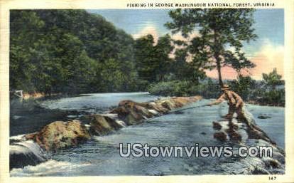 Fishing  - George Washington National Forest, Virginia VA Postcard