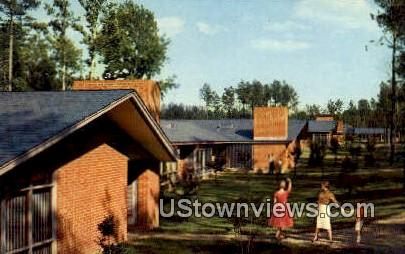 The Motor House  - Williamsburg, Virginia VA Postcard