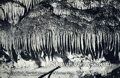 The Fish Market Caverns - Luray, Virginia VA Postcard