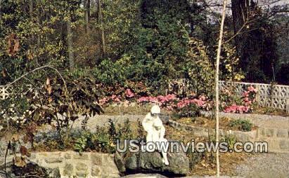 Botanical Gardens - Norfolk, Virginia VA Postcard