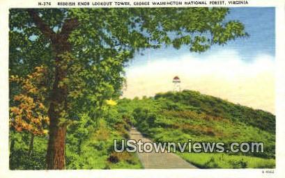 Reddish Knob Lookout Tower  - George Washington National Forest, Virginia VA Postcard