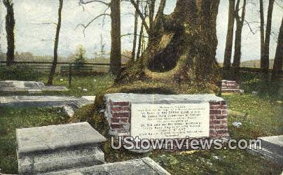 Graveyard  - Jamestown, Virginia VA Postcard