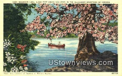 Mountain Lake By Moonlight  - Virginia VA Postcard