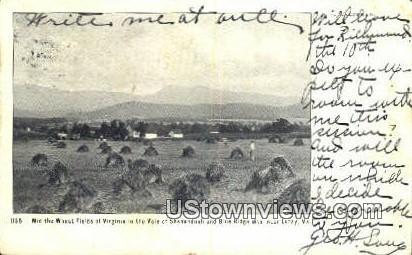 Mid West Fields Of Virginia  - Luray Postcard