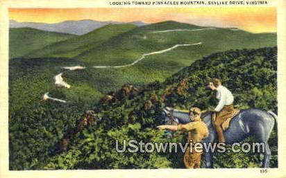 Looking Towards Pinnacles Mountain  - Skyline Drive, Virginia VA Postcard