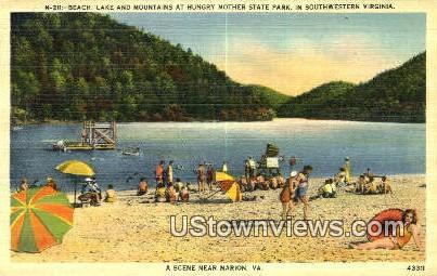 Beach  - Marion, Virginia VA Postcard