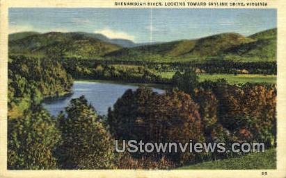 Shenandoah River  - Skyline Drive, Virginia VA Postcard
