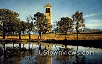 Luray Singing Tower  - Virginia VA Postcard