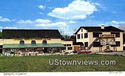 Sperryville Emporium  - Virginia VA Postcard