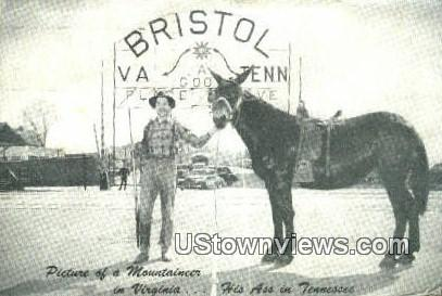 The Twin City - Bristol, Virginia VA Postcard