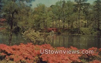 Municipal Gardens  - Norfolk, Virginia VA Postcard