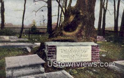 Graveyard At Jamestown  - Virginia VA Postcard