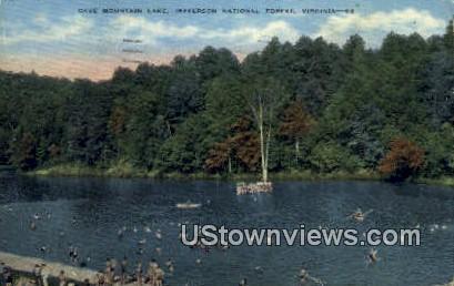 Cave Mountain Lake  - Jefferson National Forest, Virginia VA Postcard