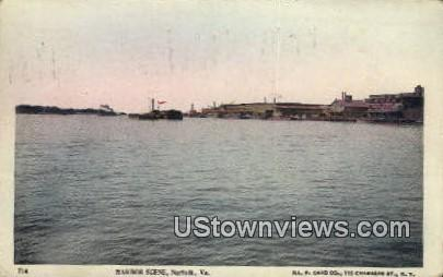Harbor Scene  - Norfolk, Virginia VA Postcard