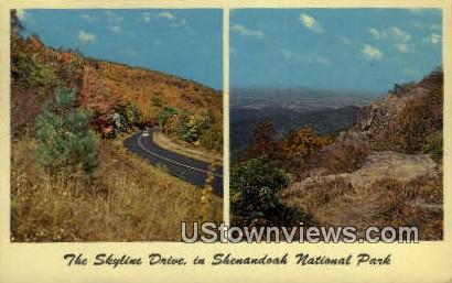 The Skyline Drive  - Shenandoah National Park, Virginia VA Postcard