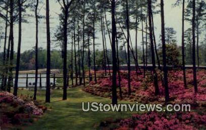 Delhaven Gardens And Nursery  - Bayside, Virginia VA Postcard