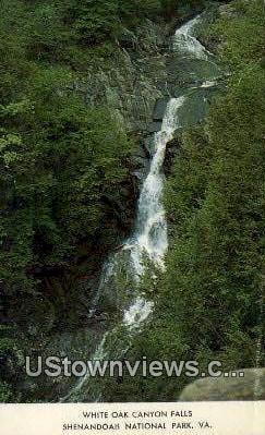 White Oak Canyon Falls  - Shenandoah National Park, Virginia VA Postcard