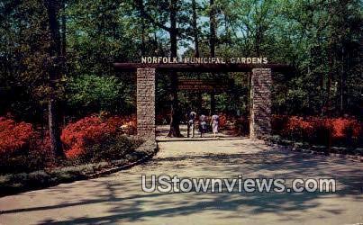 Norfolk Municipal Gardens  - Virginia VA Postcard