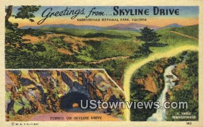 Greetings from - Skyline Drive, Virginia VA Postcard
