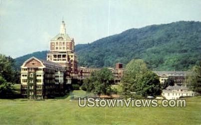 The Homestead  - Hot Springs, Virginia VA Postcard