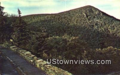 Hawks Bill Mountains  - Shenandoah National Park, Virginia VA Postcard