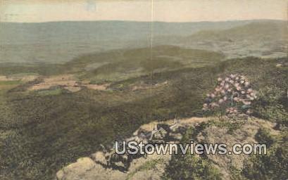 Along Skyline Drive  - Shenandoah National Park, Virginia VA Postcard