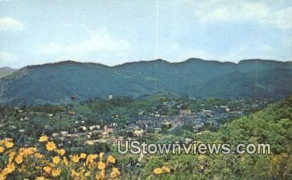 Panoramic View - Pennington Gap, Virginia VA Postcard