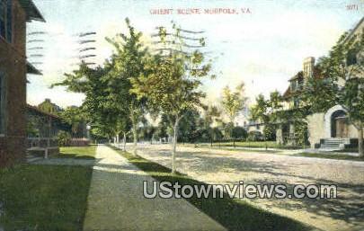 Ghent Scene  - Norfolk, Virginia VA Postcard