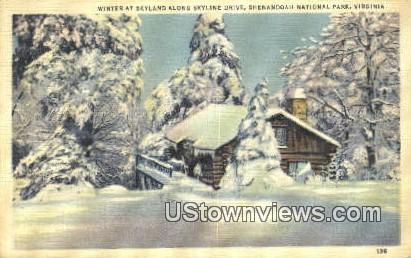 Winter Skyland  - Shenandoah National Park, Virginia VA Postcard