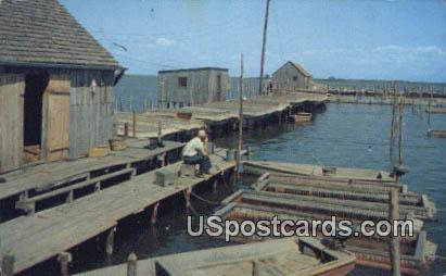 Crab Floats & Shanty - Chesapeake Bay, Virginia VA Postcard