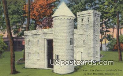 Castle at Children's Zoo - Roanoke, Virginia VA Postcard