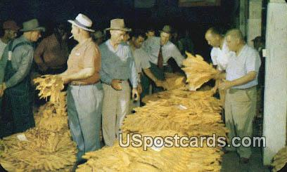 Selling Tobacco - Misc, Virginia VA Postcard