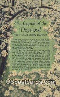 Legend of the Dogwood - Misc, Virginia VA Postcard