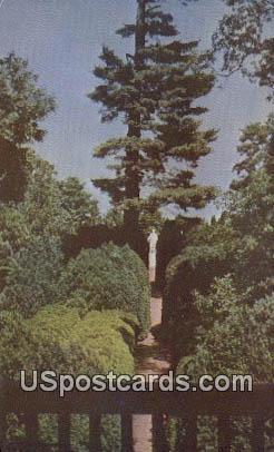 Garden, Home of James Monroe - Charlottesville, Virginia VA Postcard