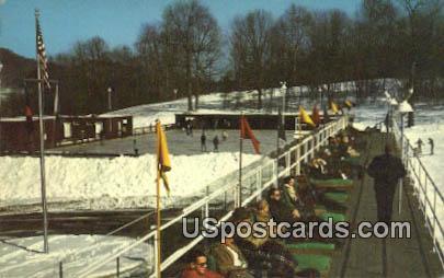 Homestead - Hot Springs, Virginia VA Postcard