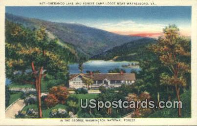 Sherando Lake, Forest Camp Lodge - Waynesboro, Virginia VA Postcard