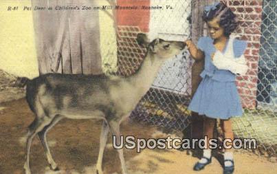 Pet Deer, Children's Zoo, Mill Mountains - Roanoke, Virginia VA Postcard