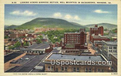 Business Section - Roanoke, Virginia VA Postcard