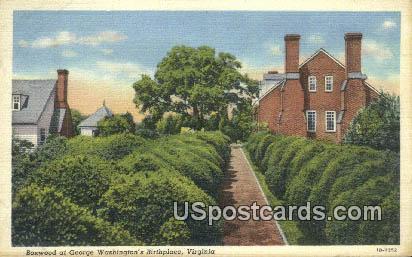Boxwood, George Washington's Birthplace - Fredericksburg, Virginia VA Postcard