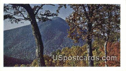 Blue Ridge Parkway, VA Postcard       ;         Blue Ridge Parkway, Virginia