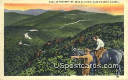 Pinnacles Mountain - Skyline Drive, Virginia VA Postcard