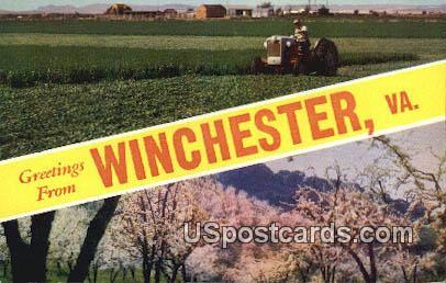 Winchester, VA Postcard       ;         Winchester, Virginia