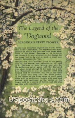 Legend of Dogwood - Misc, Virginia VA Postcard