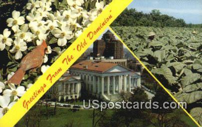 Dogwood - State Flower, Virginia VA Postcard