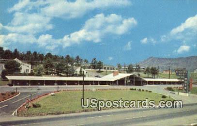Hitching Post Motel - Roanoke, Virginia VA Postcard