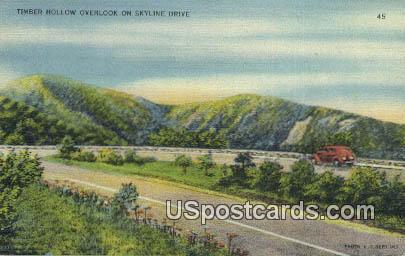 Timber Hollow - Skyline Drive, Virginia VA Postcard