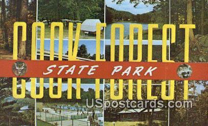 Cook Forest State Park, Virginia Postcard     ;       Cook Forest State Park, VA