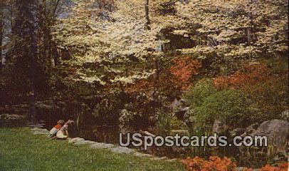 Springtime Garden - Waynesboro, Virginia VA Postcard