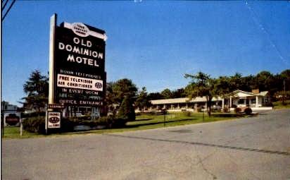 Old Dominion Hotel - Roanoke, Virginia VA Postcard